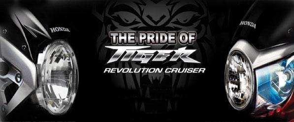 new-tiger